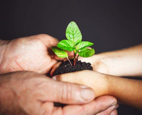 médecin et naturopathe travaille ensemble